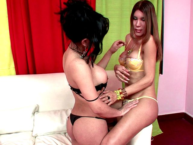 Tempting shemales in sexy lingerie and high heels Melanie And Vanessa touching their bodies with lust